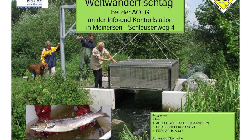 Weltwanderfischtag Bild 2