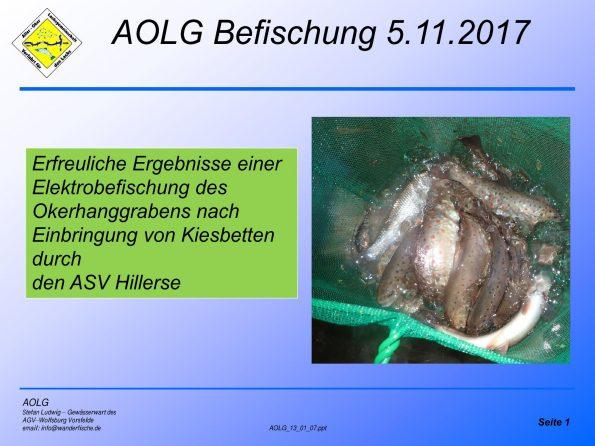 Titelseite Staugraben Ebefischung 5.11.2017